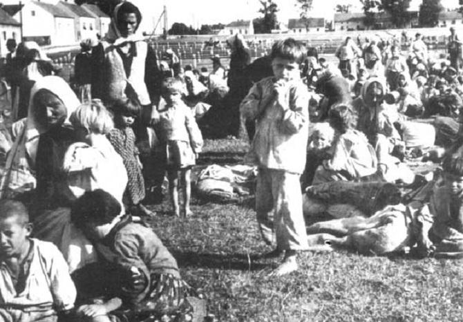 1. a. jasenovac 2