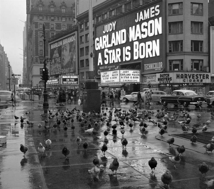 Times Square with Pigeons by Frank Oscar Larson copy.ss_full