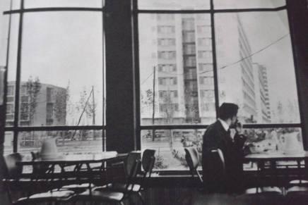 Nemanja Rotar: Povratak u gradbivstvovanja