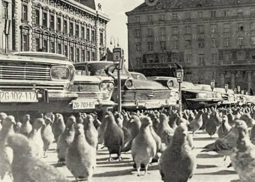 Trg Republike; snimio Drago Lipić 1970'