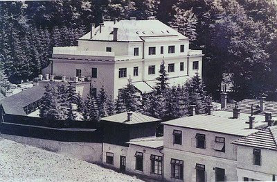 Dorta Jagić: BRESTOVAC