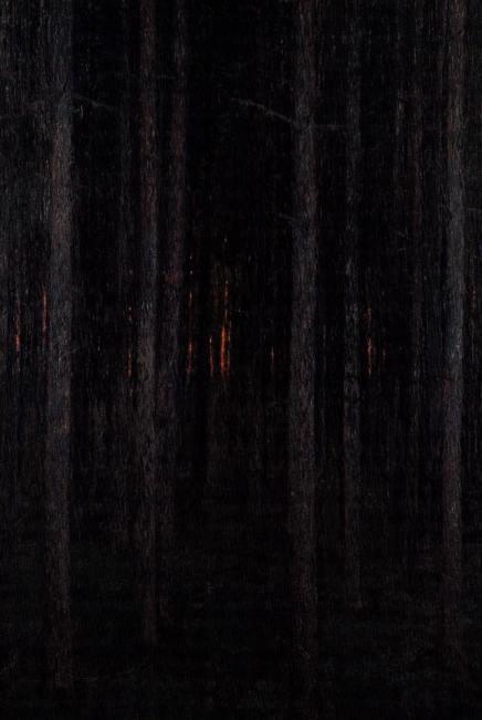 Stevo Basara: Crkavanjenoći