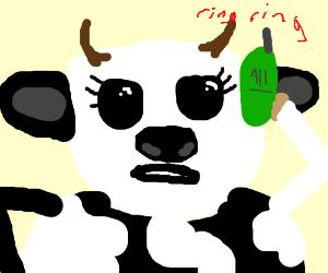 1-a-cow