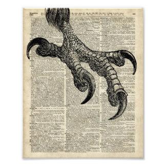 eagles_talon_claws_vintage_book_page_illustration_photographic_print-rdf93784bfa5a4e9ea660c70af66b5f36_fk9n_8byvr_324