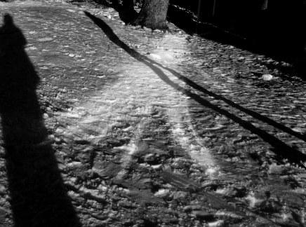 Krajem zime: Zagreb – Jasenovac – Osijek – Vukovar – Vinkovci i natrag u jednomdanu