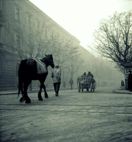 Ana Nikvul: Ovih dana dok nosiš miris smrti na desnomramenu