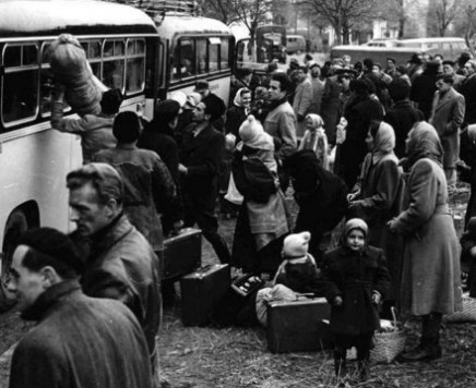 Domagoj Margetić: Jedna putna s Autoputa bratstva i jedinstva…