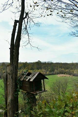 Slađana Bukovac: Onamjesta