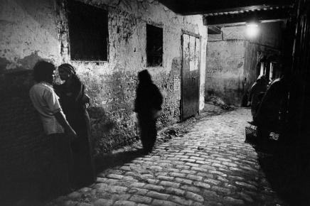 Predrag Finci: Tiha noć uBejrutu