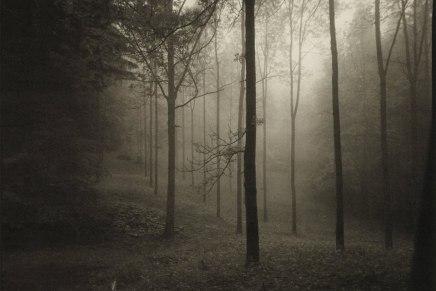 Nikola Gamilec:  Razmišljanja iz ponoćnogvrta