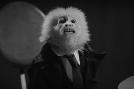 Dejan Đorđević: Majmun odčoveka