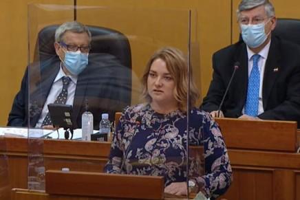 Anja Šimpraga u Saboru: PRED VAMA STOJI DIJETE IZKOLONE
