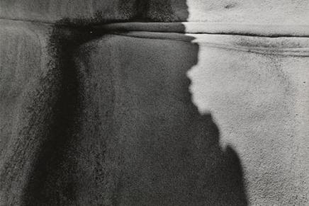 Darija Žilić: Svjetlo itama
